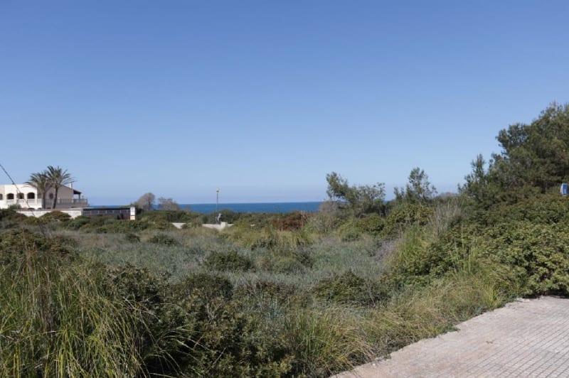 Baugrundstück in Colonia de Sant Pere auf Mallorca zum Kauf 200 Meter Strand